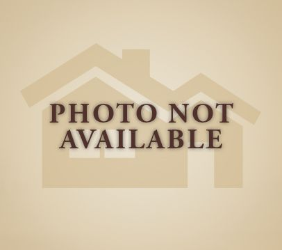 14529 Carino Ter, Bonita Springs, FL - USA (photo 1)