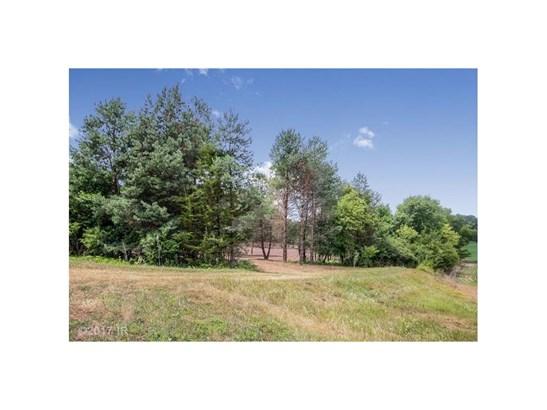 Cross Property - New Virginia, IA (photo 4)