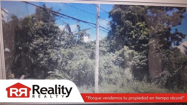 Sector Los Machos Pr 982 Km 3.5, Ceiba - PRI (photo 1)