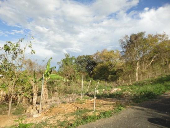 Ceiba Solar #3, Camuy - PRI (photo 3)