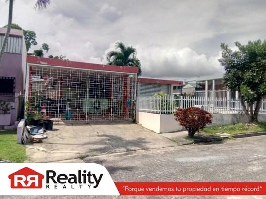 Tanagra  #35, Guaynabo - PRI (photo 1)