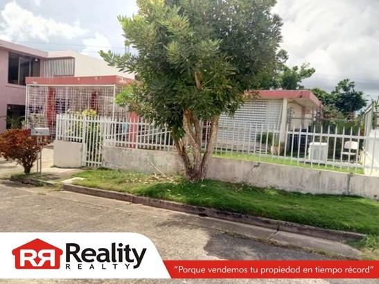 Tanagra  #35, Guaynabo - PRI (photo 2)