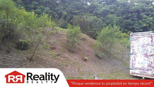 Carr. Pr-837 Km 2.3 , Guaynabo - PRI (photo 5)