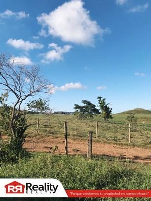 Pr-130 Km 7.1 (int.) , Hatillo - PRI (photo 5)