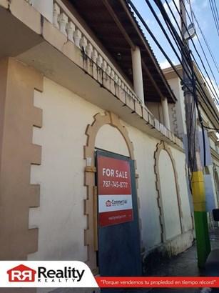#61 Georgetti Street, Comerio - PRI (photo 3)