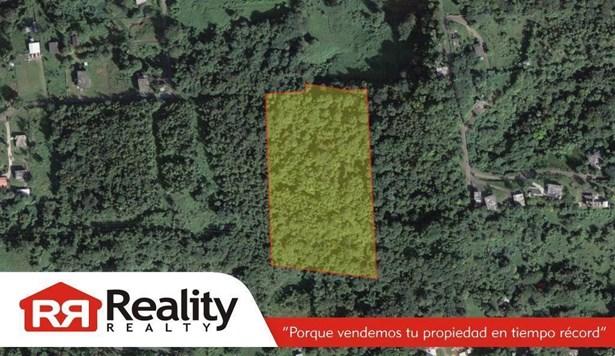 Lot C Pr-959 Km 3.3 (int), Rio Grande - PRI (photo 1)