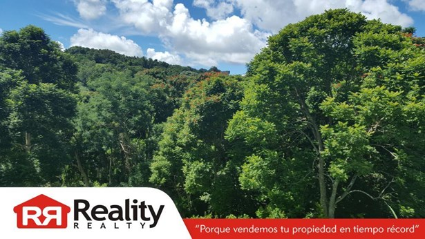 Sr (pr) 910 Km. 1.3, Humacao - PRI (photo 4)