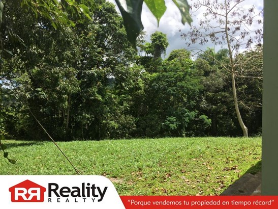 Sector Malpica Lote A Km 5.56 Pr 958, Rio Grande - PRI (photo 4)