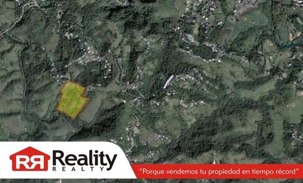 Sr-162 Km 4.3 Int., Aibonito - PRI (photo 1)
