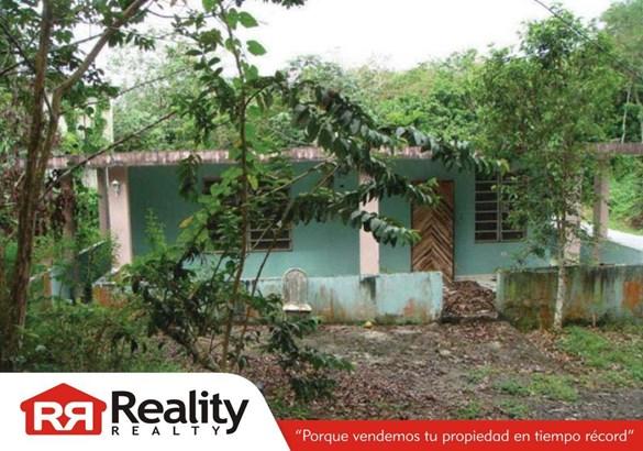 Pr-794 Km 0.8 , Aguas Buenas - PRI (photo 1)