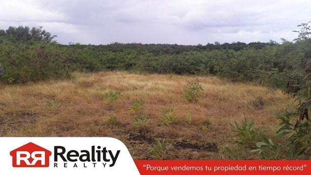 Bo. Mameyes Solar #27, Rio Grande - PRI (photo 1)