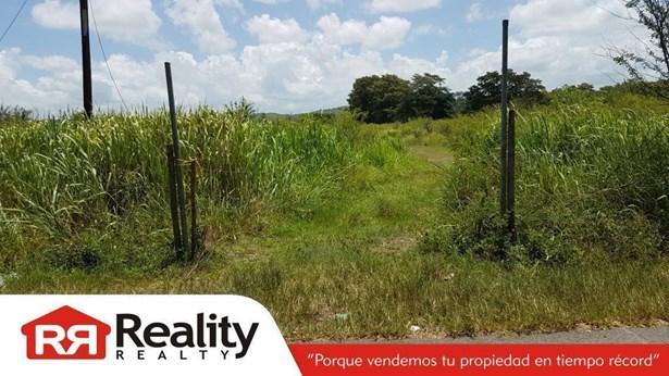 Solar #3 Carr. 116 Km. Hm. 2.0 , Lajas - PRI (photo 4)