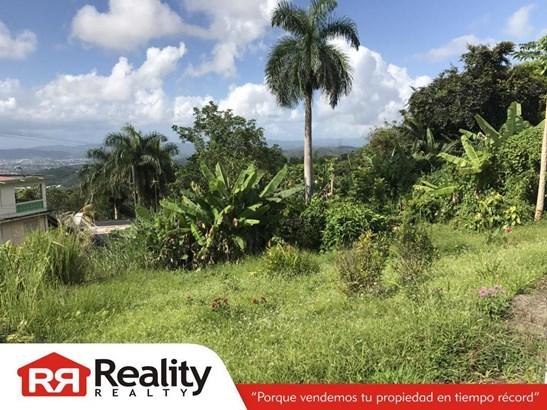 Caguas - PRI (photo 3)