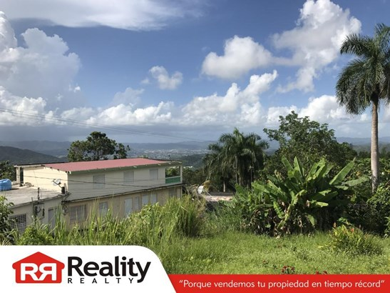 Caguas - PRI (photo 4)