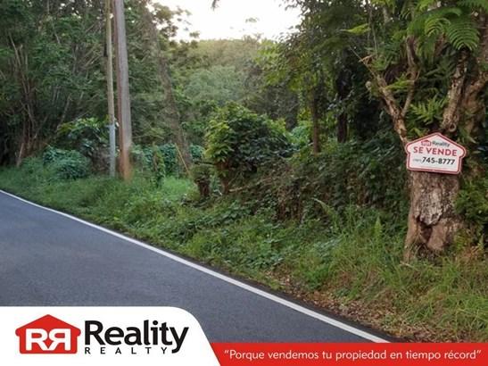 956 , Rio Grande - PRI (photo 2)