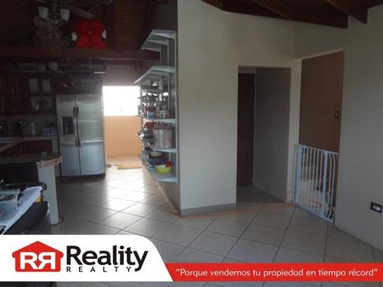 802 Km 13 Interior, Corozal - PRI (photo 4)