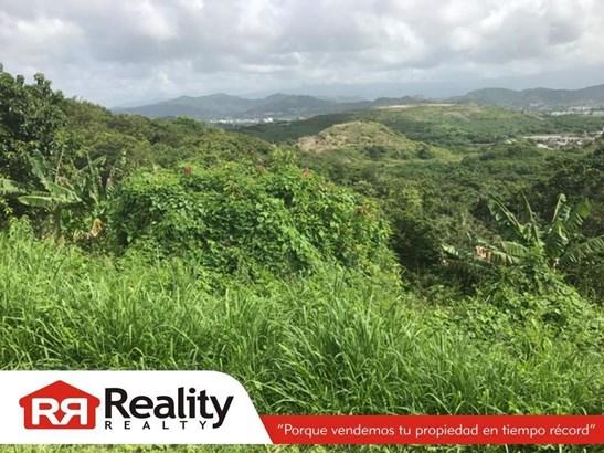 Camino El Mangal , Humacao - PRI (photo 2)