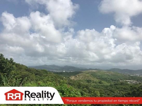 Camino El Mangal , Humacao - PRI (photo 3)