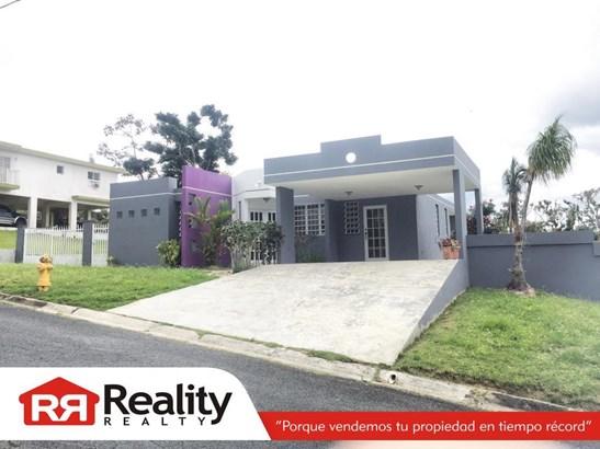 3 B22, Caguas - PRI (photo 3)