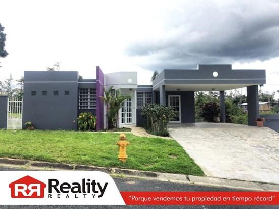 3 B22, Caguas - PRI (photo 4)