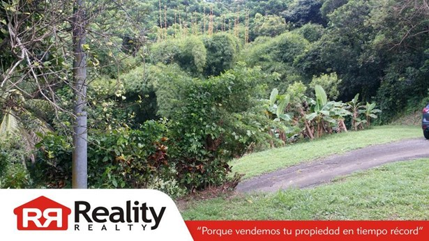 Pr 910, Humacao - PRI (photo 3)