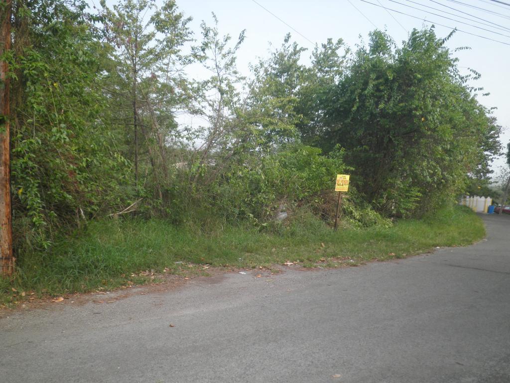 103 Km 5.8, Cabo Rojo - PRI (photo 3)