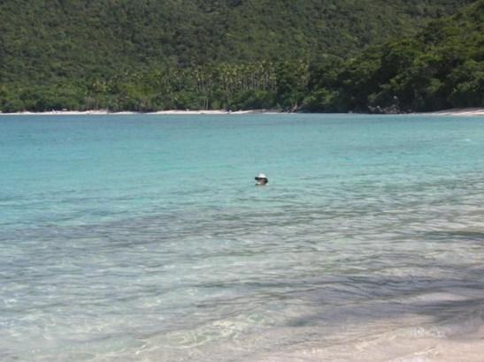 Beach (photo 2)