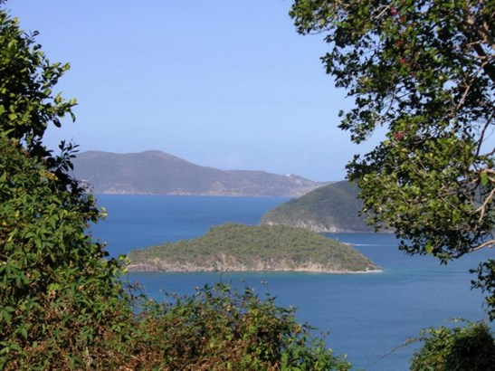 Whistling Cay & Jost (photo 5)