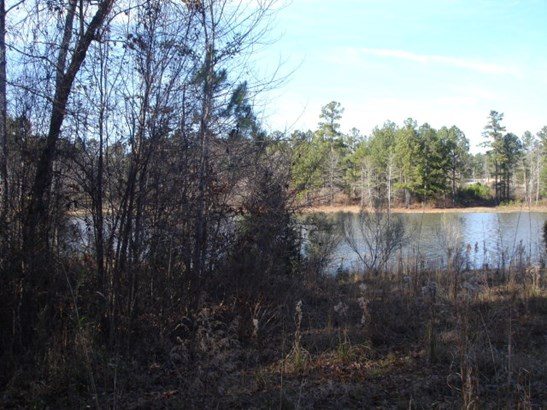 1052 East Pine Valley Drive, Thomson, GA - USA (photo 5)
