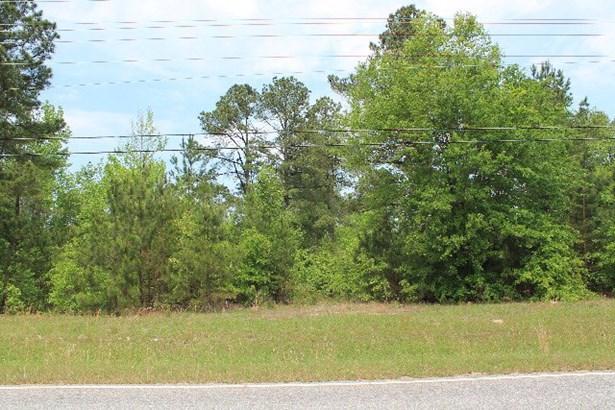 1351 Clark Road, Augusta, GA - USA (photo 3)