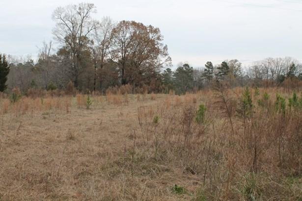 1251 Mercier Road, Lincolnton, GA - USA (photo 3)