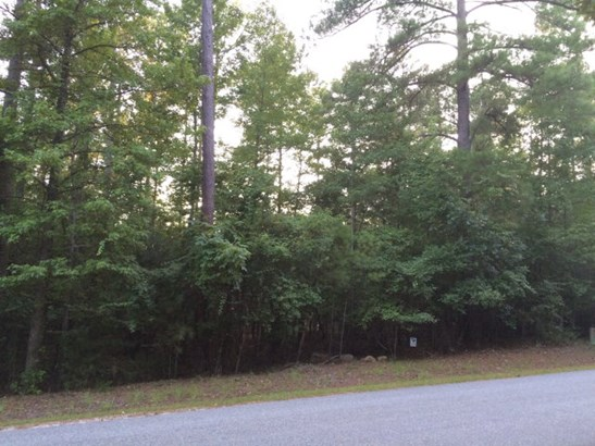 Lot 4 Shenandoah Drive #lot 4 Lot 4, Bordeaux, SC - USA (photo 3)