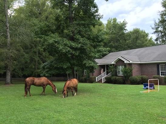 1582 Cedar Springs Road, Appling, GA - USA (photo 2)