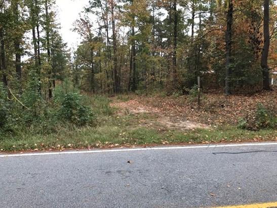 Confederate Drive, Modoc, SC - USA (photo 1)