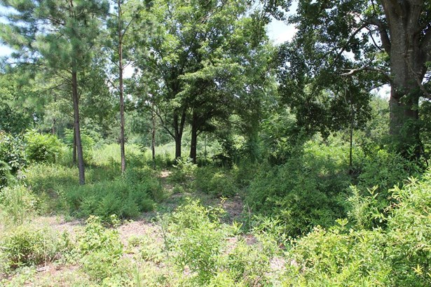 Hwy 378, Lincolnton, GA - USA (photo 1)