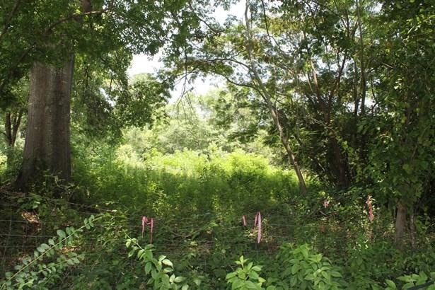 Hwy 378, Lincolnton, GA - USA (photo 2)