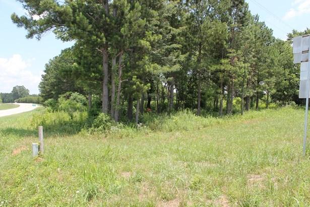Hwy 378, Lincolnton, GA - USA (photo 3)