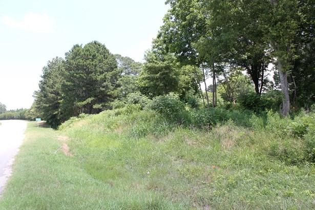 Hwy 378, Lincolnton, GA - USA (photo 4)