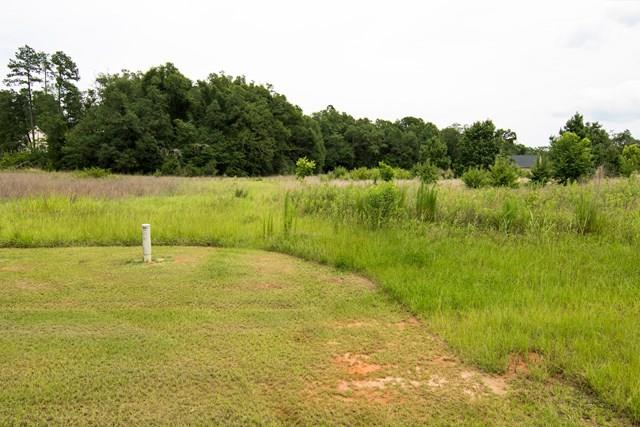 1045 Hadden Pond Road, Waynesboro, GA - USA (photo 1)