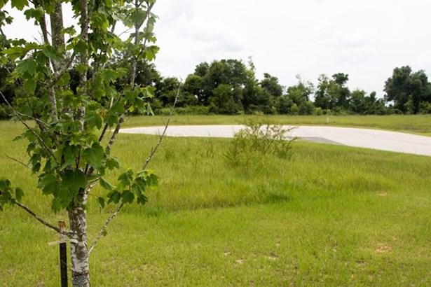 111 Meadow View Lane, Waynesboro, GA - USA (photo 5)