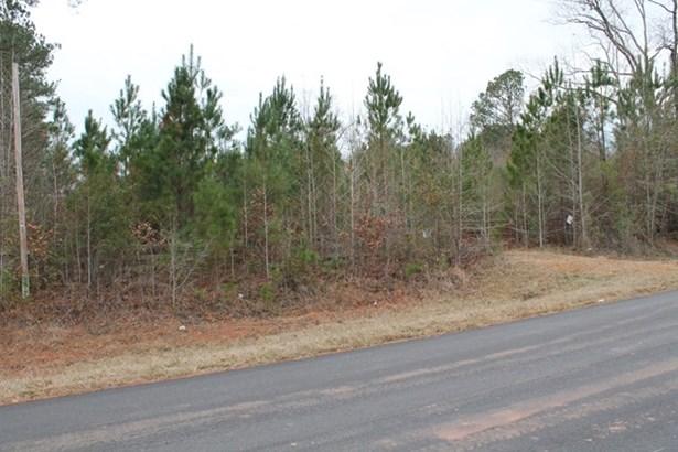 Crook Road, Lincolnton, GA - USA (photo 5)
