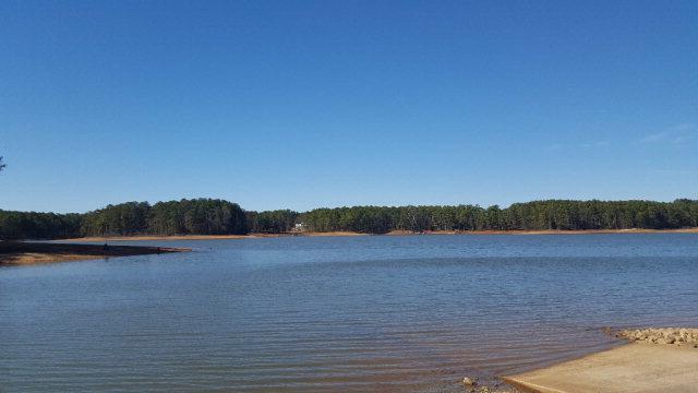 7555 Lakeside Drive, Appling, GA - USA (photo 3)