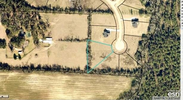 110 Meadow View Lane, Waynesboro, GA - USA (photo 3)