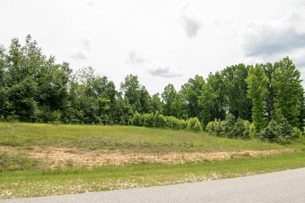 124 Meadow View Lane, Waynesboro, GA - USA (photo 1)