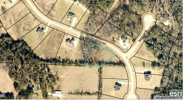 124 Meadow View Lane, Waynesboro, GA - USA (photo 3)