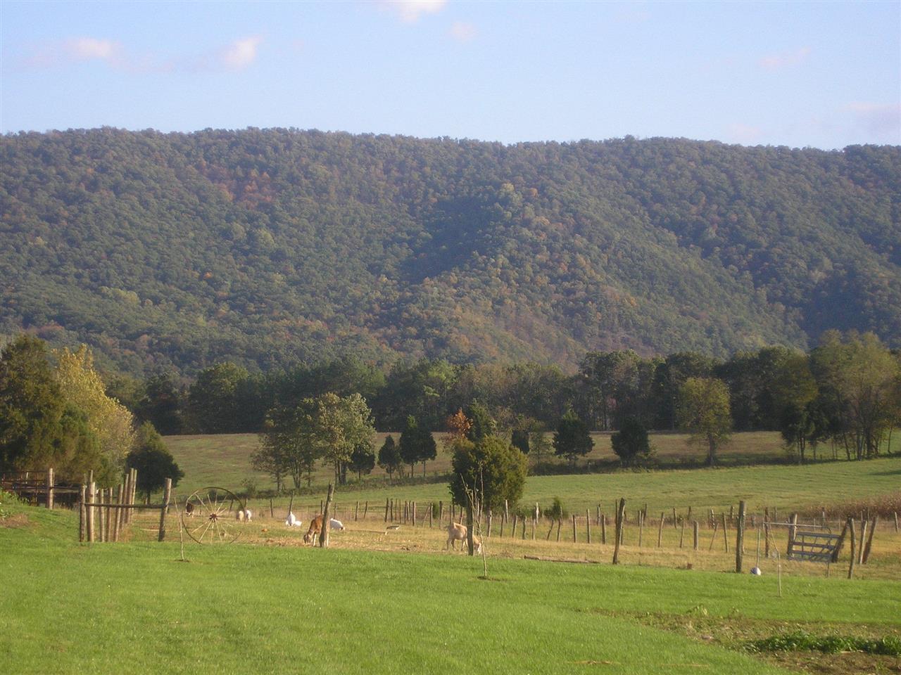 Toms Brook, VA - mountain ridge