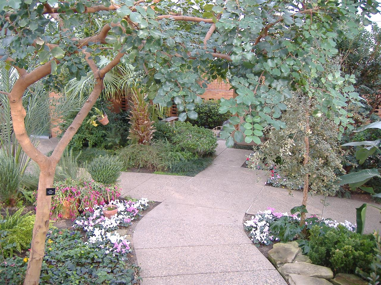 """This is one of the lovely paths inside Matthaei Botanical Gardens in Ann Arbor, MI, one of many places in Southeast Michigan to escape """"winter's fury."""""""