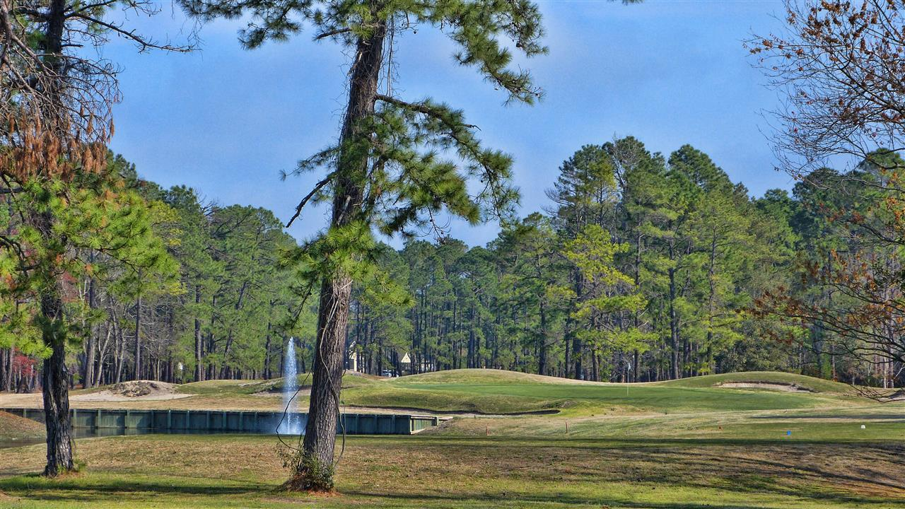 Harbour Pointe Golf course in Fairfield Harbour, New Bern NC