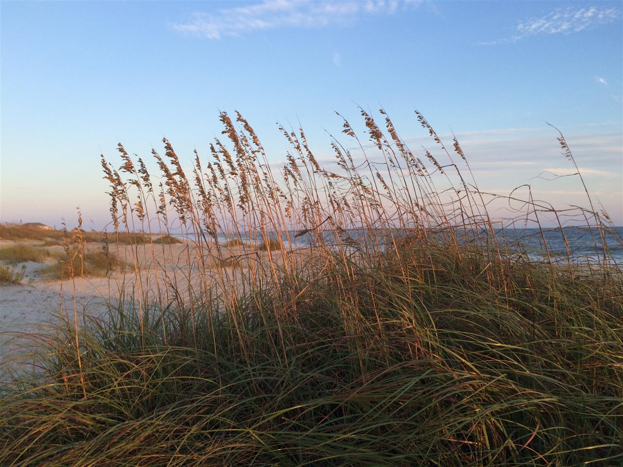 The Carolina beaches are a popular vacation destination for North and South Carolinians and out-of-staters alike. #SeaOats #OakIslandNC #LeadingRElocal