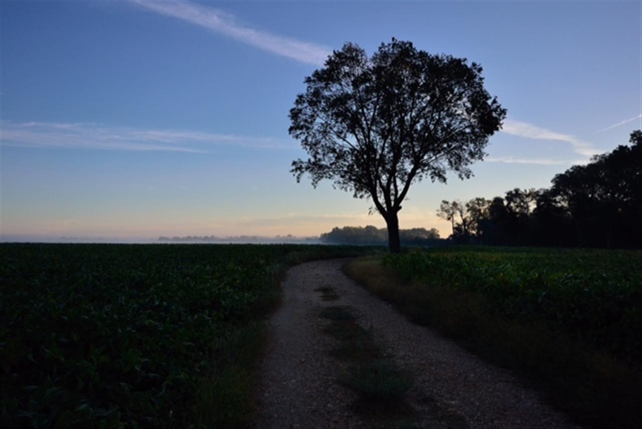 Belvedere Plantation, Fredericksburg VA